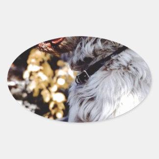 "FB_IMG_1482235024463 The Famous ""PESKY""Kellum Pond Oval Sticker"