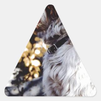 "FB_IMG_1482235024463 The Famous ""PESKY""Kellum Pond Triangle Sticker"