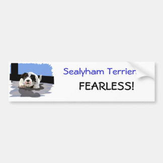 Fearless Protector Car Bumper Sticker