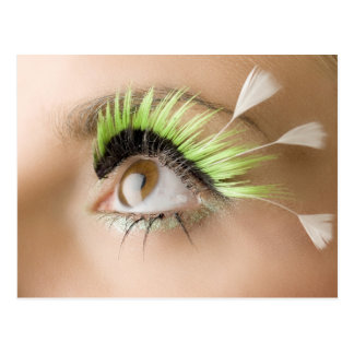 Feather Eyes Postcard