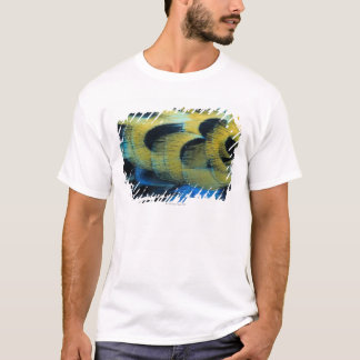 Feather surface 4 T-Shirt