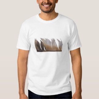 Feather Tees