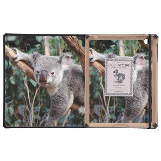 Featherdale Wildlife Park, Koala Bears Cover For iPad
