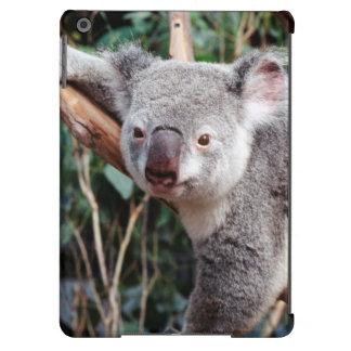 Featherdale Wildlife Park, Koala Bears iPad Air Cover