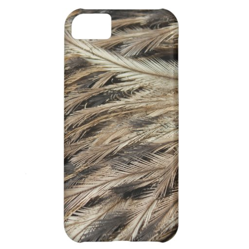 Feathers! iPhone 5C Case