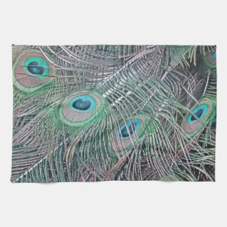 feathers of a peacock. tea towel