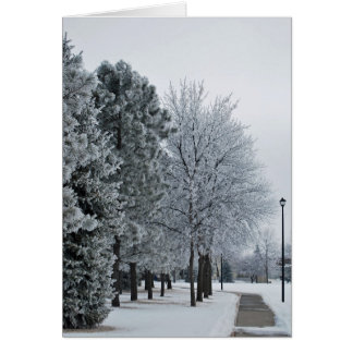 February 2012 Hoar Frost Grand Forks, North Dakota Card
