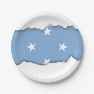 Federated StATES of Micronesia Flag Paper Plate