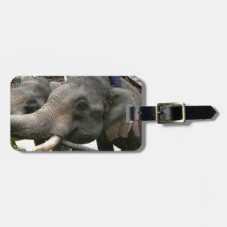 Feeding Asian Elephants Bananas in Thailand! Luggage Tag