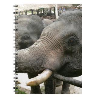 Feeding Asian Elephants Bananas in Thailand! Spiral Notebook