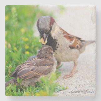 Feeding Baby Stone Coaster