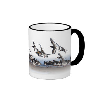 Feeding Oystercatchers Mug