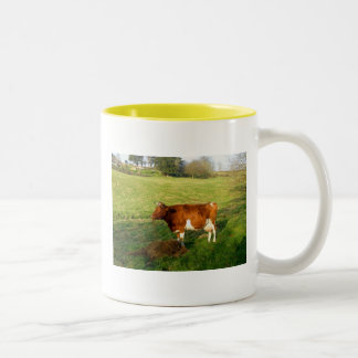 Feeding time for Guernsey cow Two-Tone Mug