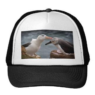 Feeding time trucker hat