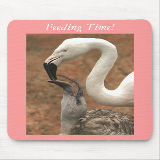 Feeding Time Mouse Pads