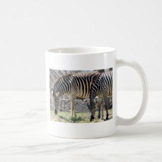 Feeding Zebras Coffee Mug