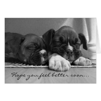 Feel Better Boxer puppies Greeting Card