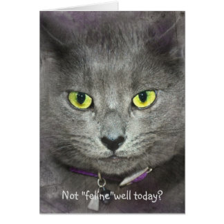 Feel Better Soon Cat Greeting Card