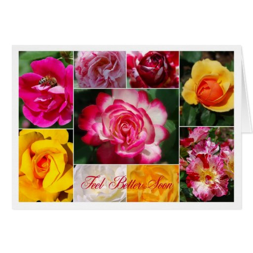 Feel Better Soon Rose Collage Yellow Interior Greeting Cards