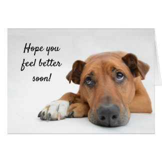 Feel Better Soon Sad Dog Get Well Card