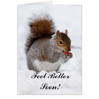 Feel Better Soon Squirrel Greeting card