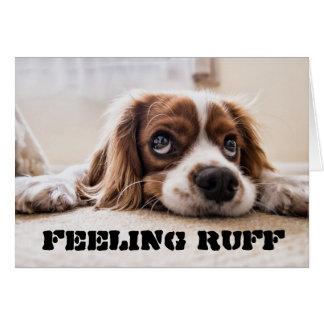 Feeling RUFF get well soon Card