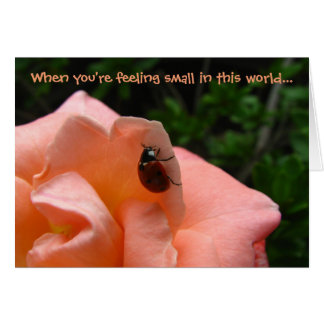 """Feeling Small? Big Part My Heart"" ladybug photo Card"