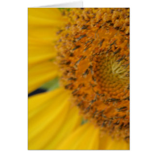 Feeling Sunny card