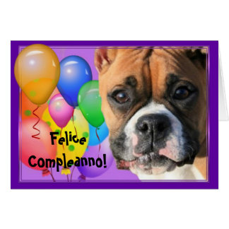Felice Compleanno Birthday Boxer greeting card