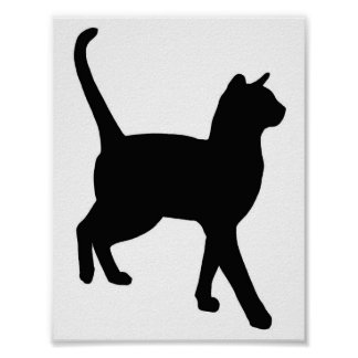 Feline Elegance Poster
