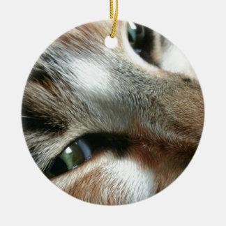 Feline Face Round Ceramic Decoration