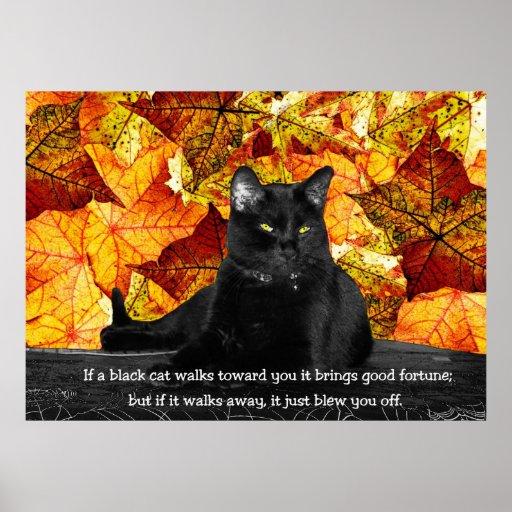 Feline Superstition Poster