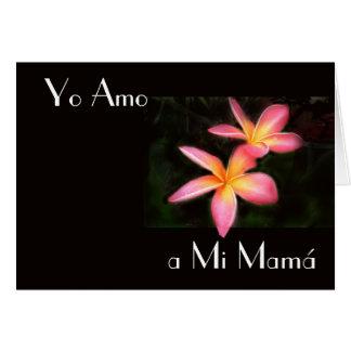Feliz Dia de la Madre 13 Greeting Cards