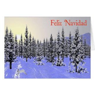 Feliz Navidad - Winter Solstice Greeting Card