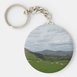 fell view phone cover basic round button key ring