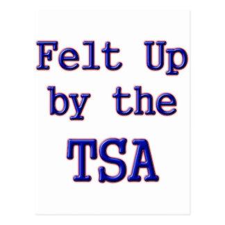 Felt Up by the TSA Postcard
