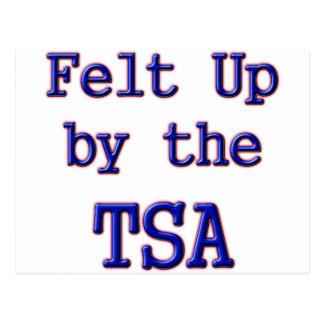 Felt Up by the TSA Postcard
