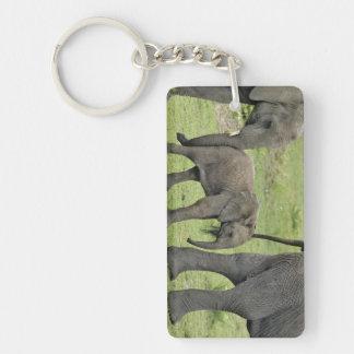 Female African Elephant with baby, Loxodonta 3 Double-Sided Rectangular Acrylic Key Ring