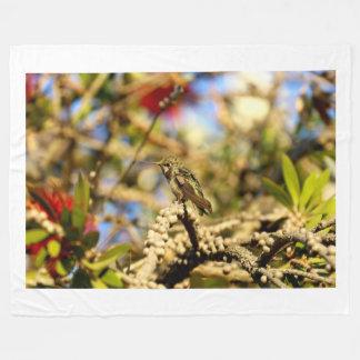 Female Anna's Hummingbird, California, Photo Fleece Blanket