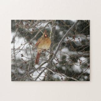 Female Cardinal   252 piece photo puzzle