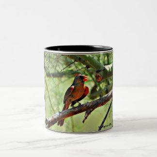Female Cardinal Coffee Mug