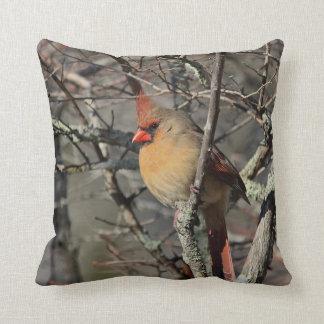 Female cardinal cushion