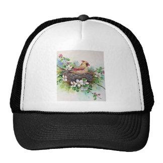 Female Cardinal Redbird in Nest Hat Cap