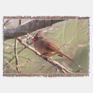 Female cardinal throw blanket