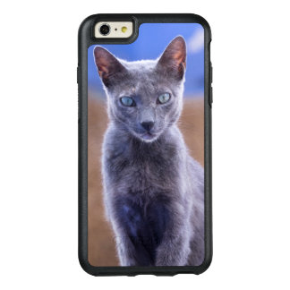 Female cat sitting, Morocco OtterBox iPhone 6/6s Plus Case