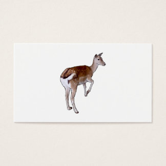 Female Deer. Business Card