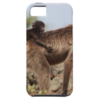 Female gelada baboon with a baby case for the iPhone 5