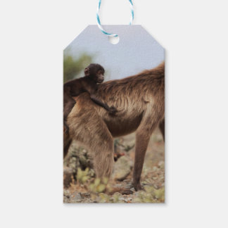 Female gelada baboon with a baby gift tags