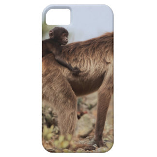 Female gelada baboon with a baby iPhone 5 case