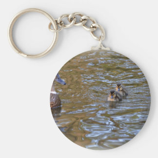Female mallard duck and ducklings basic round button key ring
